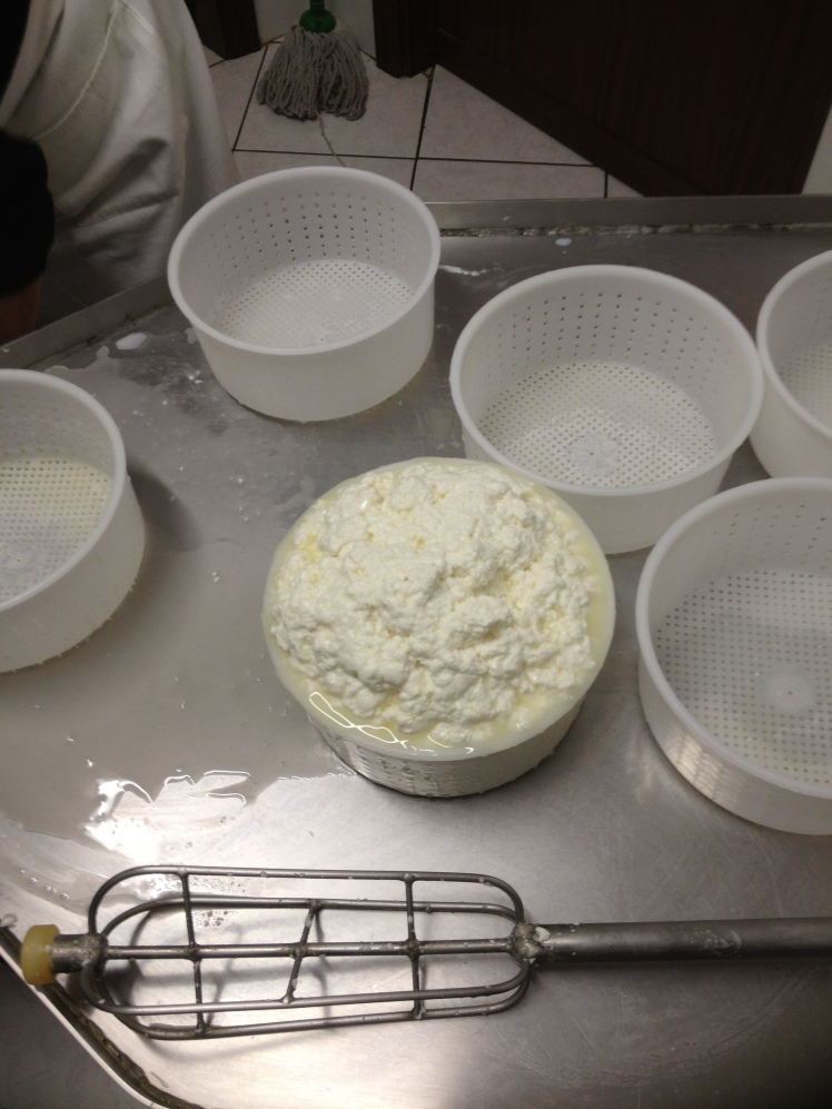 TUSCAN RICOTTA CHEESE