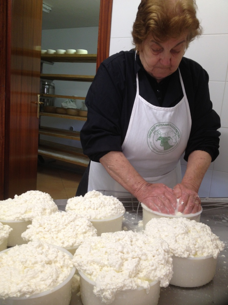 Raw milk Pecorino cheese How to press it  ~ by hand