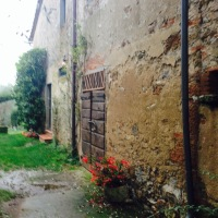 A Real Tuscan farmhouse producing wine & Organic EVO