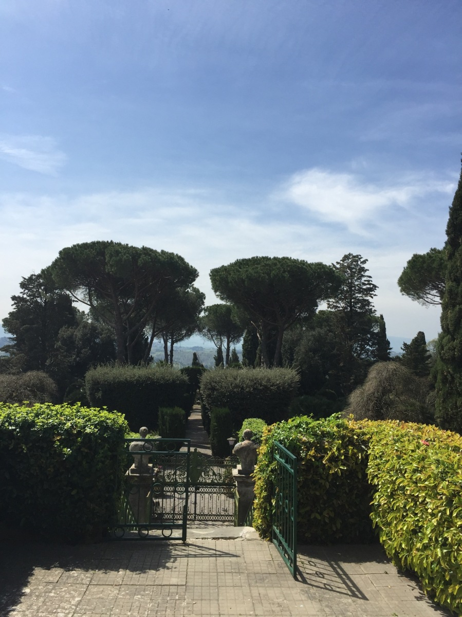 My exclusive Tuscany : lunch & wine tasting with a real Italian Countess