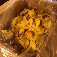 MadeinPistoia : brigidini ~ crunchy & thin as autumnal leaves🍂🍁🍂